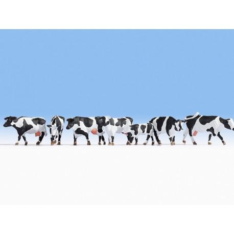Juodai baltos karvės