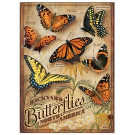 Šiaurės Amerikos drugeliai