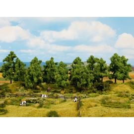 Lapuočių medžių rinkinys