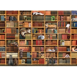 Kačių biblioteka