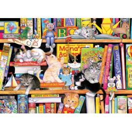 Kačiukų lentyna
