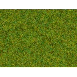 Barstoma pavasario žolė