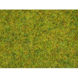 Barstoma vasaros žolė