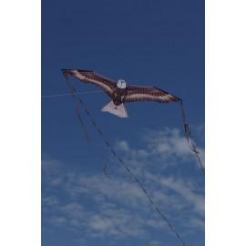 "Kite ""Eagle"""