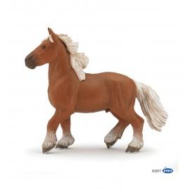 Comtois horse