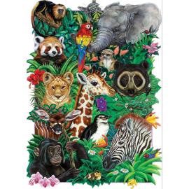 Džiunglių mažieji