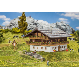 Alpių ūkininko namas