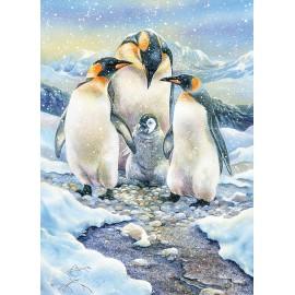 Pingvinų šeima