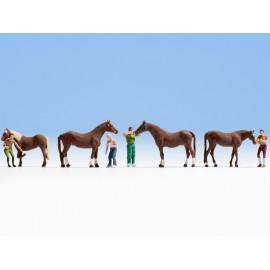 Žirgai su prižiūrėtojais